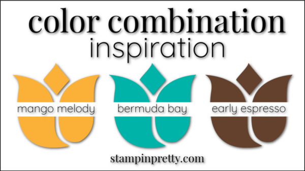 Color Combinations Mango Melody, Bermuda Bay, Early Espresso