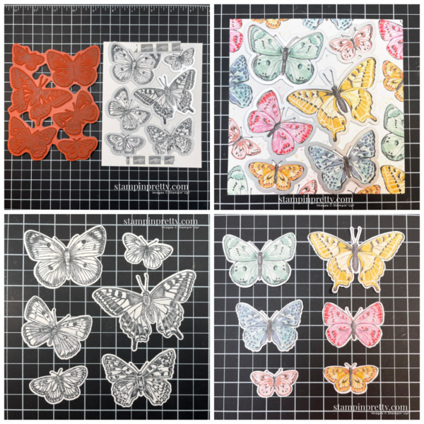 Butterfly Brilliance Collection - Stamp, Die & DSP Coordination - Mary Fish Stampin' Pretty (1)