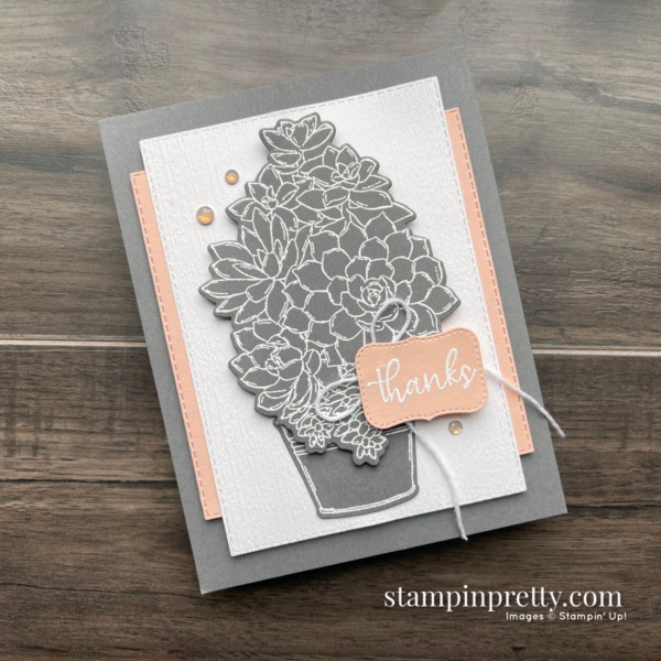 Create this card using the Simply Succulents Bundle from Stampin' Up! Card by Mary Fish, Stampin' Pretty