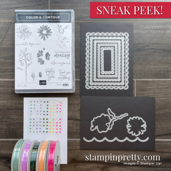 Color & Contour Bundle and In Color Jewels and Ribbon Mary Fish Stampin' Pretty