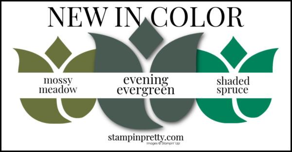 In Color Comparison - Evening Evergreen
