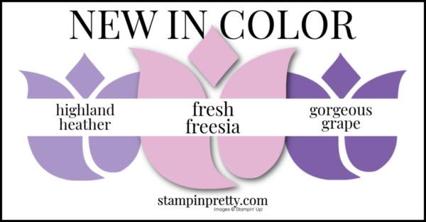 In Color Comparison - Fresh Freesia