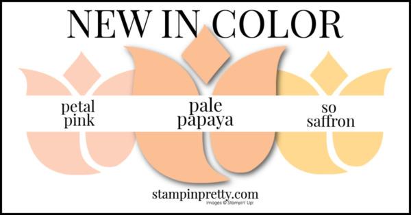 In Color Comparison - Pale Papaya