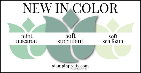 In Color Comparison - Soft Succulent