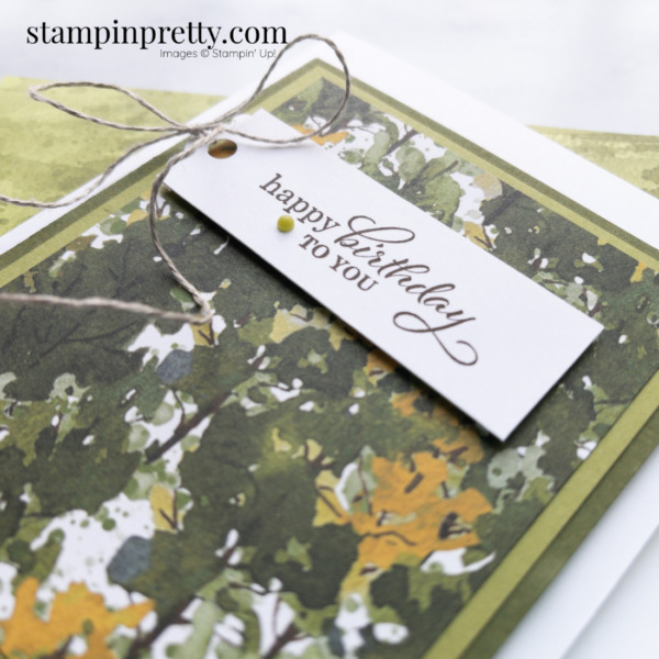 Create this masculine birthday card using the Beauty of the Earth Designer Series Paper. Mary Fish, Stampin' Pretty