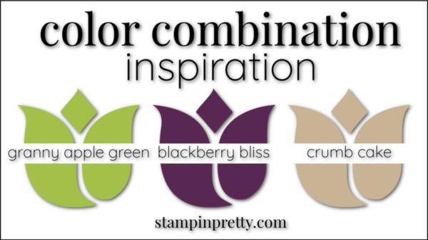 Stampin' Pretty Color Combinations Blackberry Bliss, Granny Apple Green, Crumb CAke