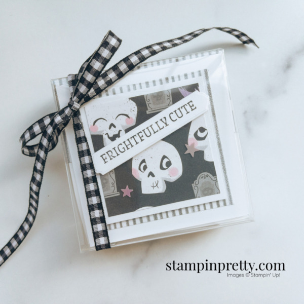 Create this cute 3x3 acetate box of halloween cards. Created by Mary Fish, Stampin' Pretty