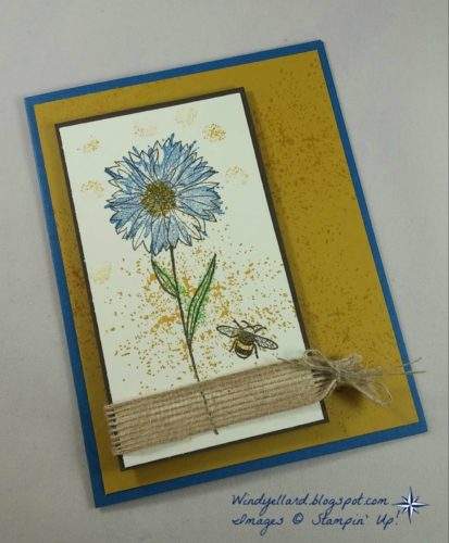 Pals Paper Crafting Card Ideas Windy Ellard Mary Fish Stampin Pretty StampinUp